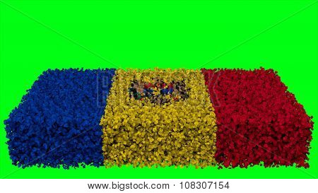 Flag of Moldova, Moldovan Flags made from leaves