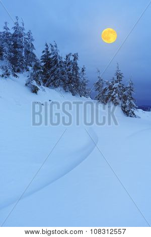 Winter landscape at night. Full moon over a mountain forest. Beauty in nature