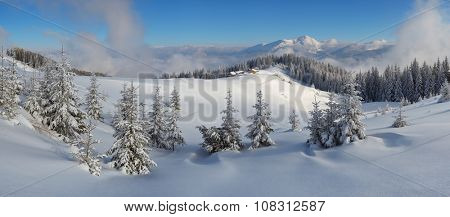 Panorama of the winter landscape in the mountains. Fir forest under snow. Christmas view. Wooden houses of the shepherds. Carpathians, Ukraine, Europe