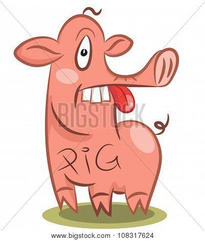 Funny Stupid Pig