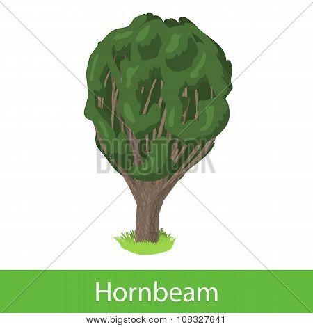 Hornbeam cartoon tree