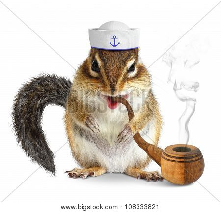 Funny Animal Sailor, Squirrel With Tobacco Pipe And Mariner Hat
