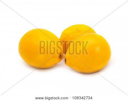Three Lemon isolated on a white background