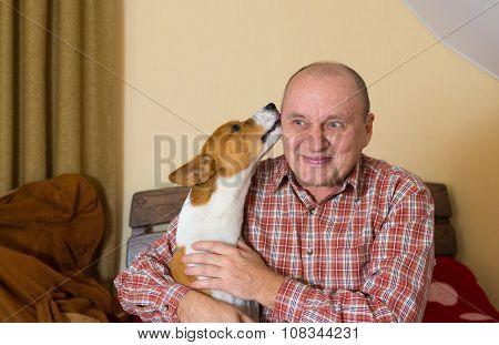 Young basenji licks the master