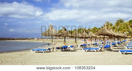 Straw Umbrellas And Loungers On The Playa De Las Americas, Tenerife
