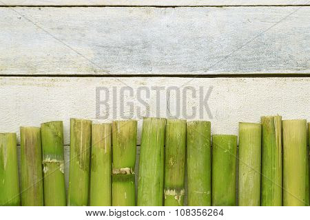 Natural green bamboo background. Zen scene
