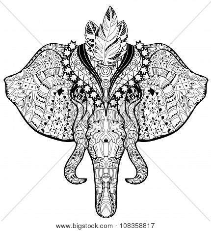 Circus Elephant head doodle on white sketch.