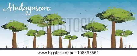 Madagascar skyline silhouette with baobabs with green foliage. Nature african landscape. Tourism, travel concept for banner, poster, placard or web site
