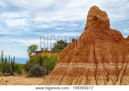 Stunning Bright Orange Sandstone Formation And Cactus
