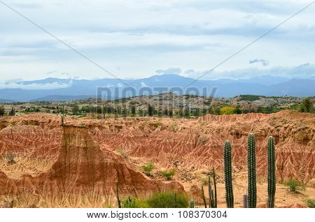 Aerial View To Stunning Orange Sandstone Formations Of A Desert And Massive Cactus