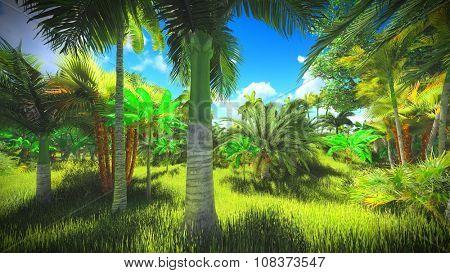 Lush vegetation in the jungle
