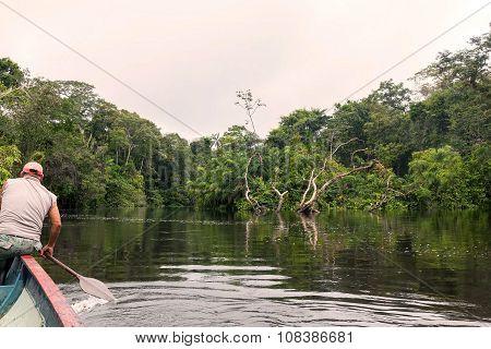 Cuyabeno River, Ecuador