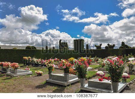 Topiary Cemetery From Tulcan, Carchi, Ecuador