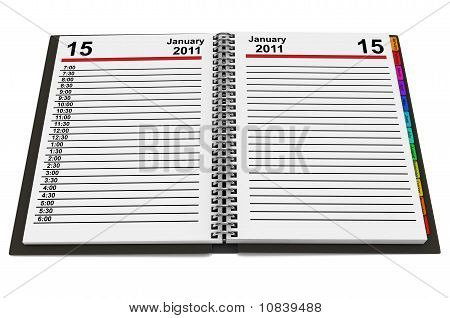 Organizer For 2011 Year Over White