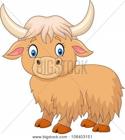 Cartoon funny yak isolated on white background