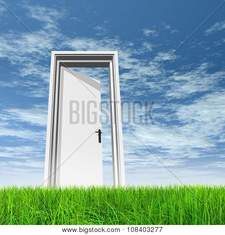 High resolution green, fresh and natural 3d conceptual grass over a blue sky background, a opened door at horizon ideal for religion,home,recreation,faith,business,success,opportunity or future banner