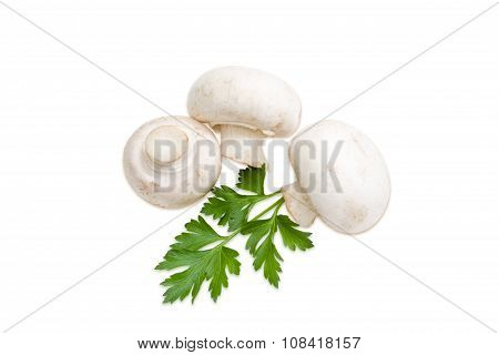 Three Champignon Mushroom And A Leaf Of Parsley