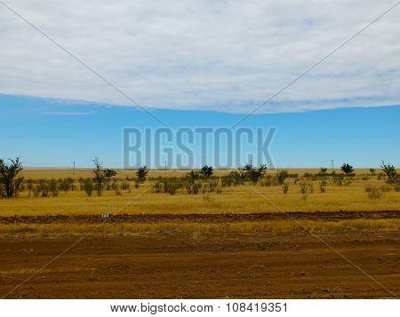 Steppe, landscape in Kalmykia