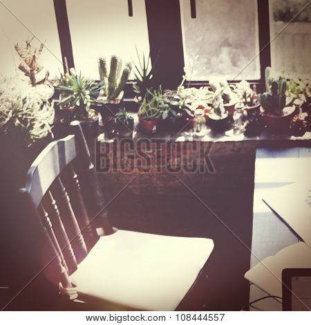Coffee Shop Relaxing Plants Nature Concept
