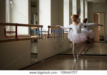 Teen beautiful ballerina posing in the image