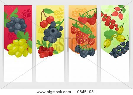 Berries Color Banners Set