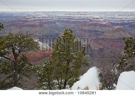 Grand Canyon in Winter at Yavapai Point, AZ