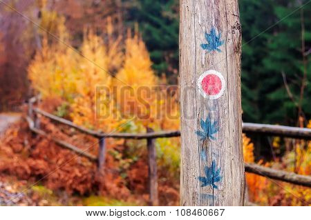 Tree Trunk With Trail Markings And Weed Leaf Paintings.
