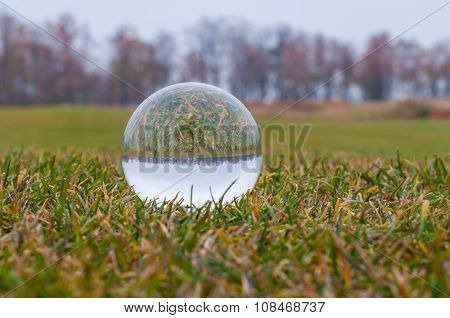 Glass transparent ball on green grass and park background