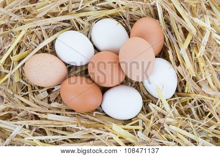 Chicken Eggs In The Nest Box Or With A Straw. Rustic. Top View