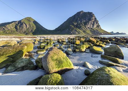Green Stones On The Lofoten Island Coastline, Norway
