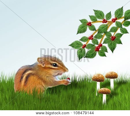 Chipmunk Eating Berry