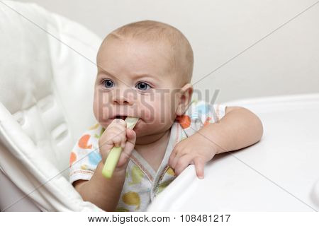 Baby Biting Celery