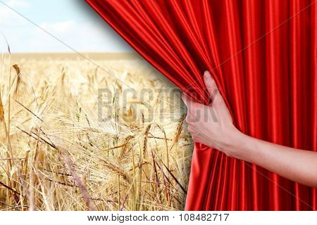 Human hand opens red curtain on nature background