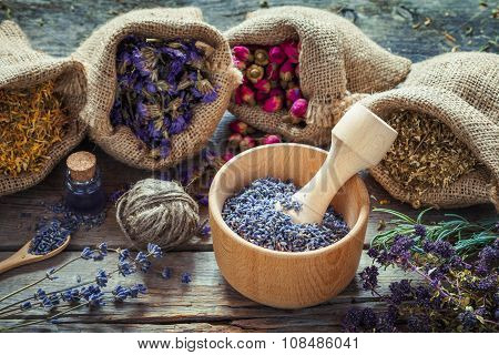 Healing Herbs In Hessian Bags, Wooden Mortar With Dry Lavender, Bottles With Tincture, Herbal Medici
