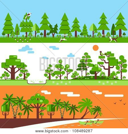 Coniferous Deciduous Tropical Forest Banners