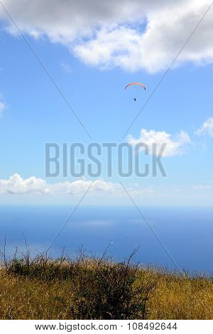Flying Paraglider On A Background Of The Sea