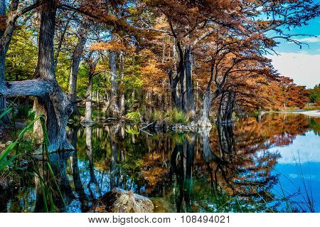 Bright Fall Colors on the Frio River at Garner State Park, Texas