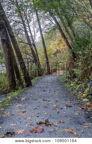 Path At Seahurst Park 4