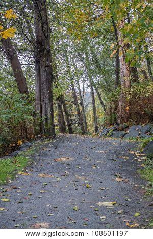 Path At Seahurst Park 5