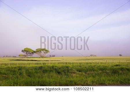 Landscape in Argentina