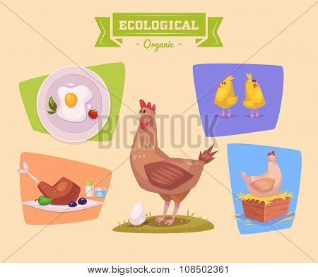 Farm animal and products made out of them. Chiken