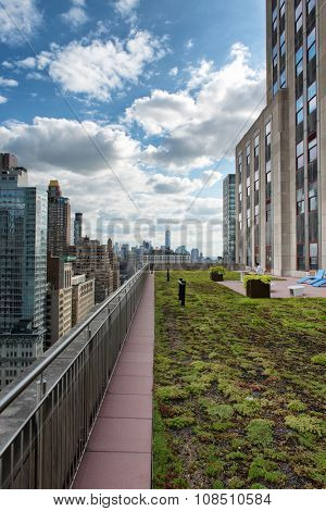 Railing Around Edge of Green Rooftop Garden with View of City Skyscrapers and Cloudy Blue Sky, New York City, New York, USA