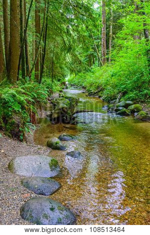 Majestic mountain river in Canada. Traboulay Port Coquitlam Park. Vancouver.