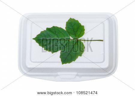 a green leave on foam food box