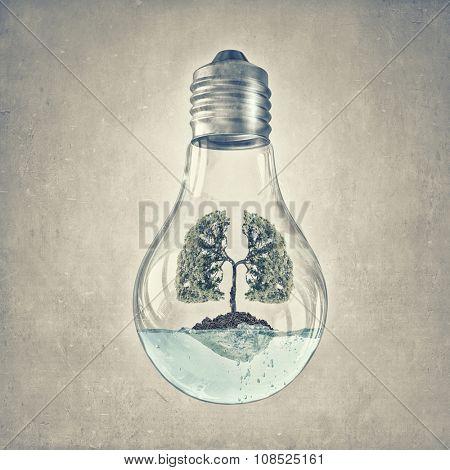 Glass lightbulb with green tree growing inside