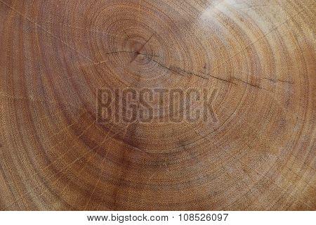 Close up  wood