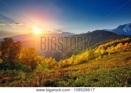 Fantastic view of the alpine valley at the foot of Mt. Ushba. Dramatic morning scene. Location Mestia, Upper Svaneti, Georgia, Europe. High Caucasus ridge. Warm toning effect. Beauty world.