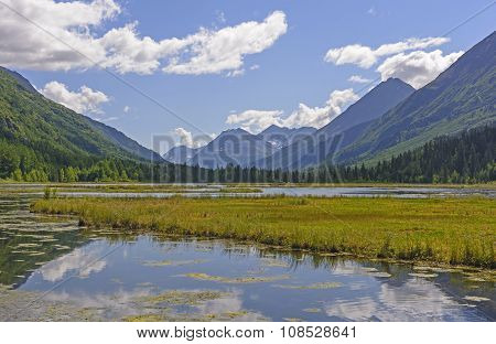 Wetland Lake In The Mountains