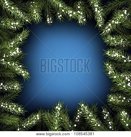Blue square background with fir branches. Vector illustration.