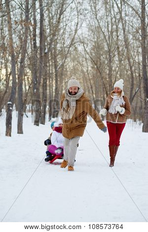 Happy man pulling sledge with kids in winter park
